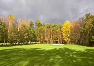 Licht und Schatten in der Saison 2017