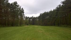 Runter zum 5. Grün (mitten im Wald)